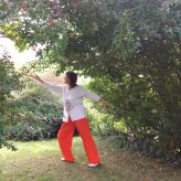 Qi Gong : 14 septembre 2017